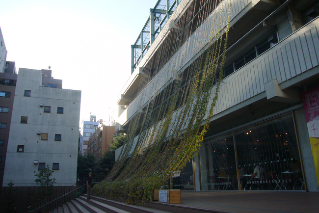 110912sawada_04.jpg