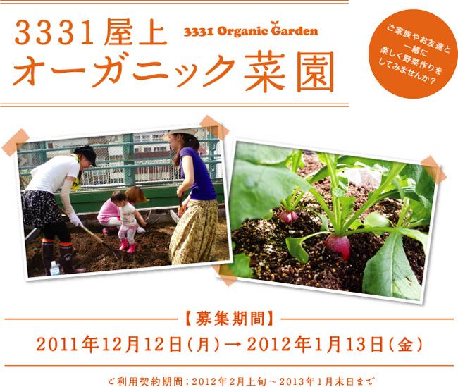 111221yoshimiya_01.jpg